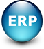 Web Development in ERP